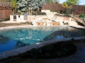 Swimming pool contractor 12