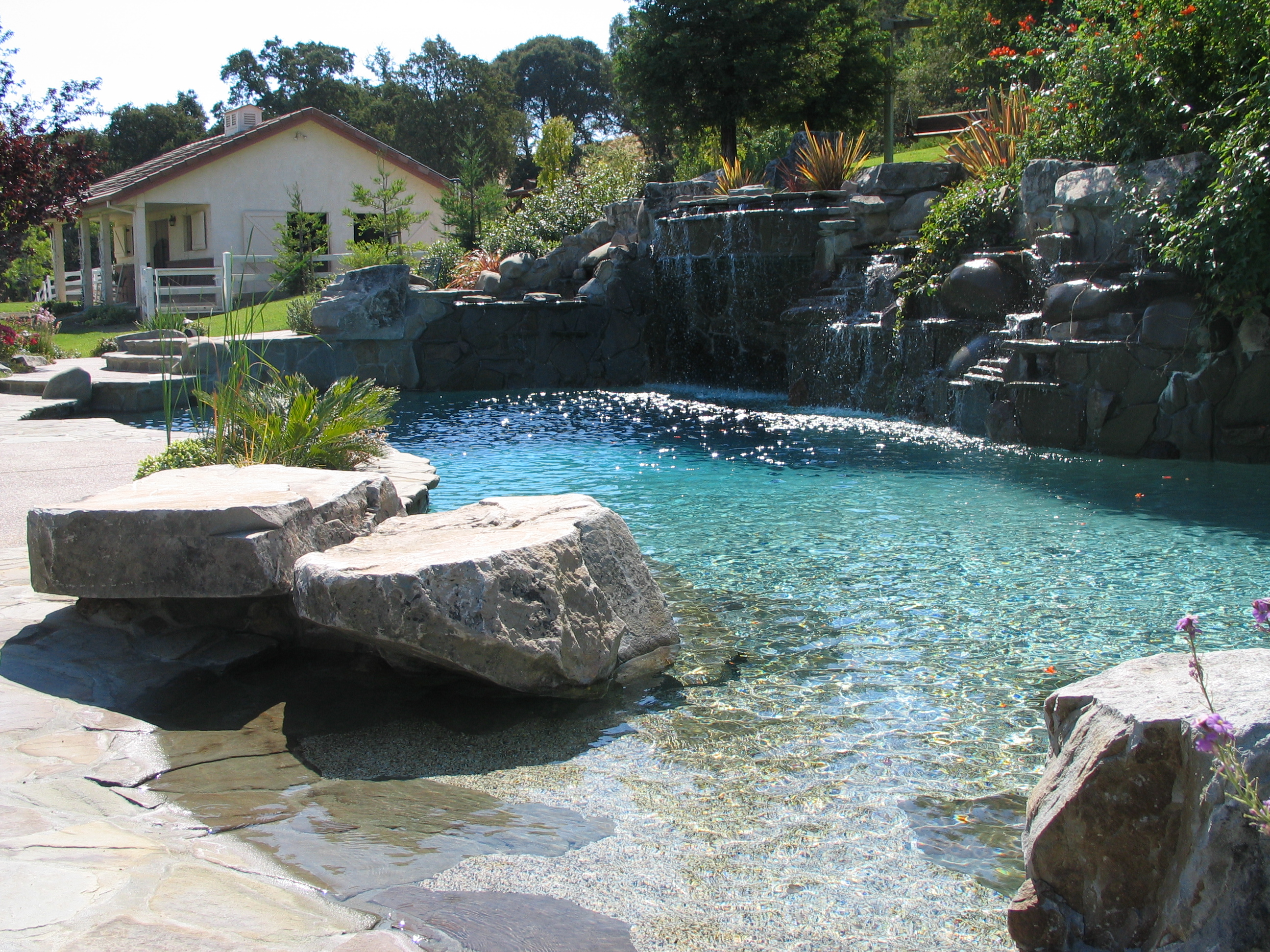 Swimming pool contractor alamo for Swimming pool contractors