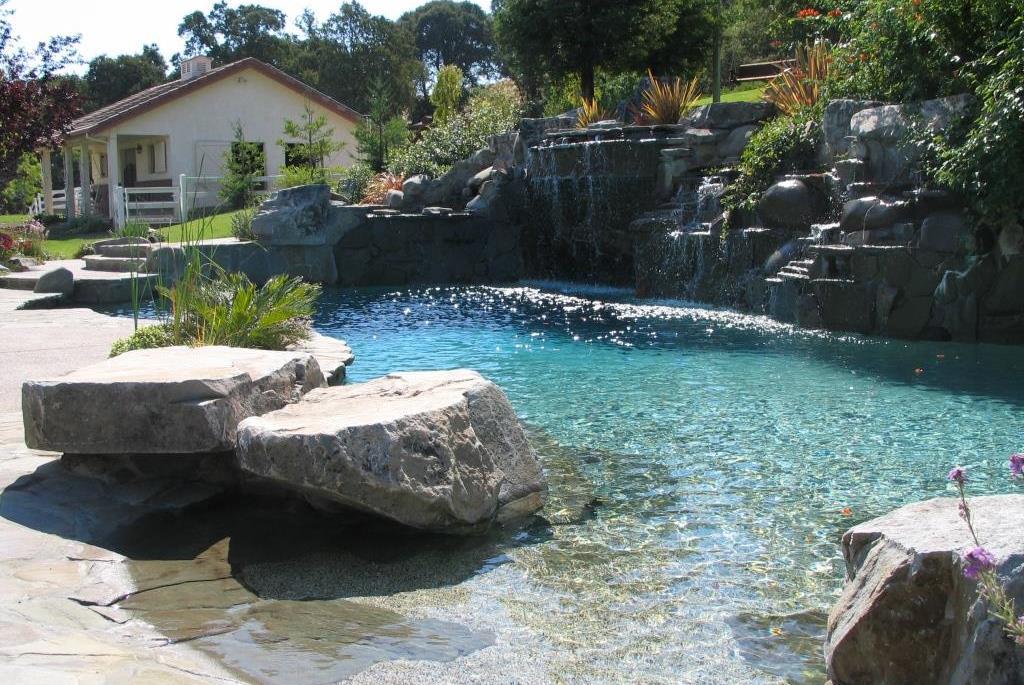 Swimming Pool Service