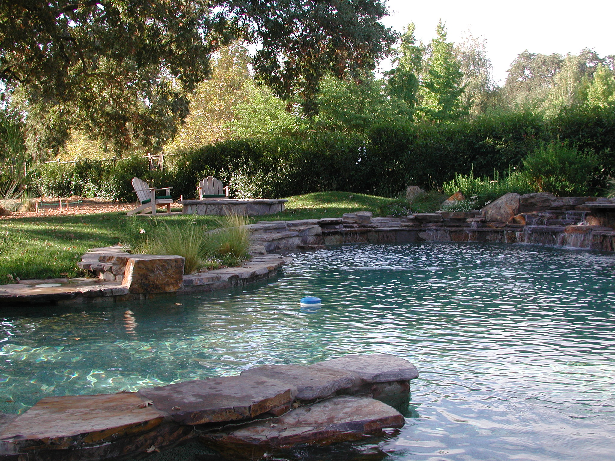 Swimming Pool and Landscape Design