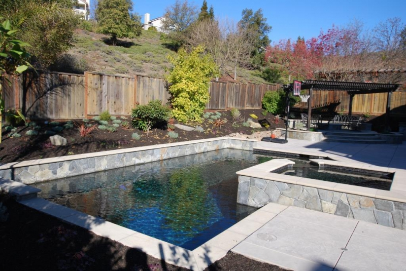 Swimming Pool Contractor Pleasanton