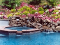 Swimming pool natural design and landscape 20