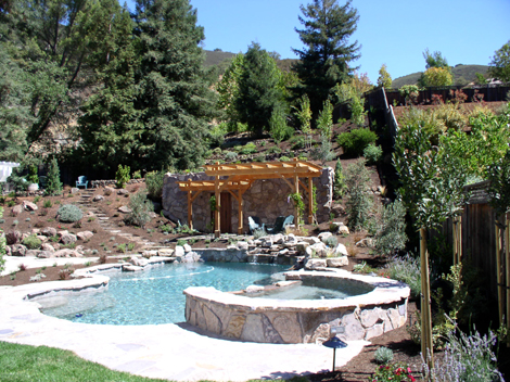 hardscape and landscape design with pool