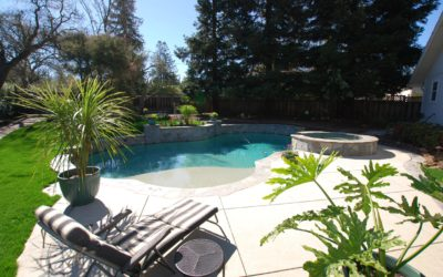 Pool and Concrete Project in Walnut Creek